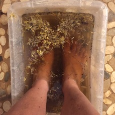 Detoxing TEA Foot Bath for the Conscious Yogi