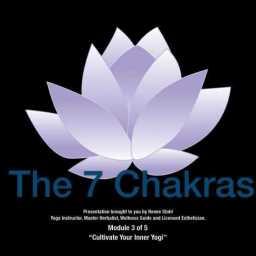 the-7-chakras-workshop_scruberthumbnail_0
