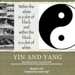 Yin and Yang, Yin Workshop