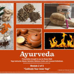 ayurveda-video_scruberthumbnail_1